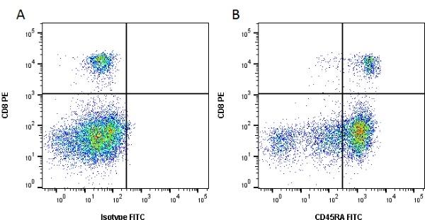 CD45RA Antibody | CA4.1D3 gallery image 1