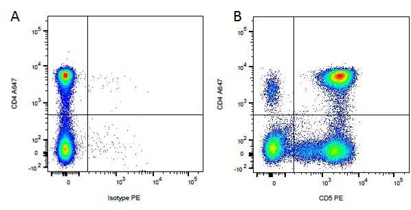 CD5 Antibody   YKIX322.3 gallery image 2