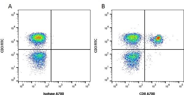 CD8 Antibody | YCATE55.9 gallery image 1