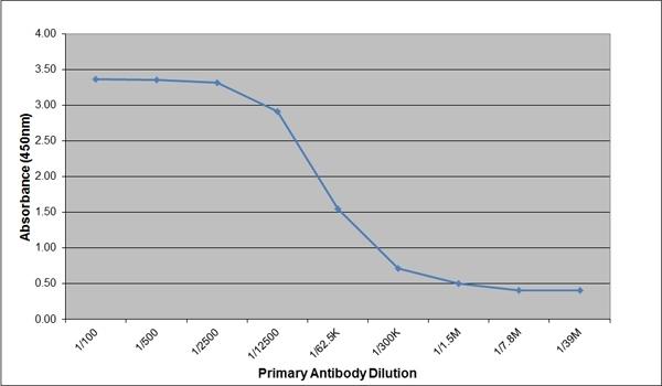 IgG2 Antibody | CA4F1 gallery image 1