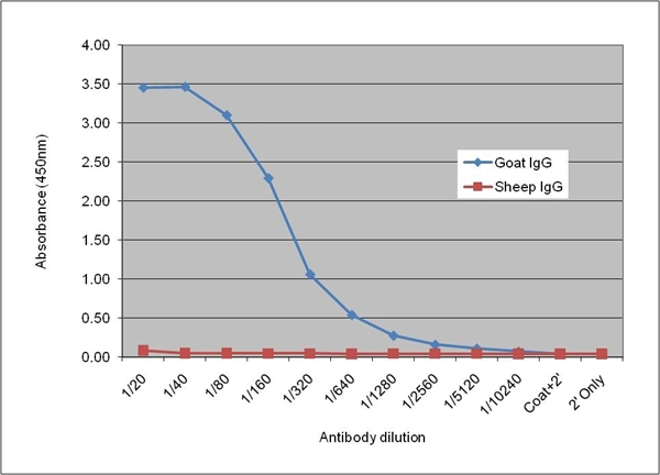 IgG Antibody | AbD09077 gallery image 1