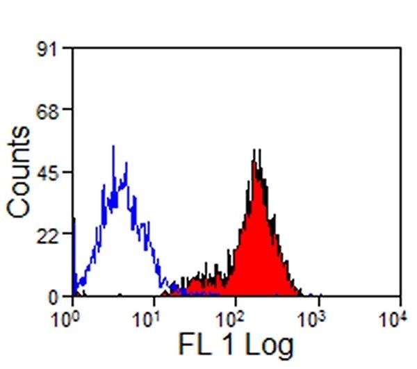 CD11a/CD18 Antibody | CVS9 gallery image 3