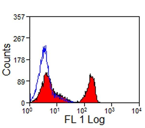 CD4 Antibody   CVS4 gallery image 1