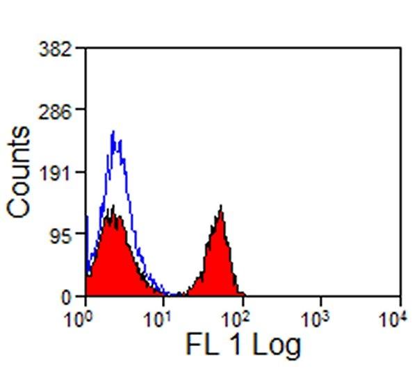 CD4 Antibody   CVS4 gallery image 2
