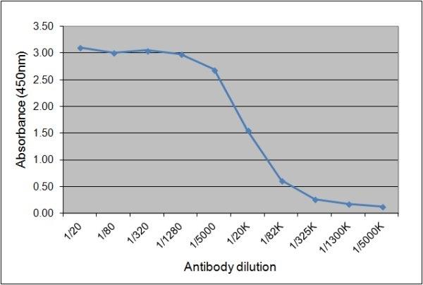 IgGa Antibody | CVS48 gallery image 1