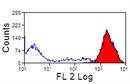 MHC Class I Monomorphic Antibody   CVS22 thumbnail image 3