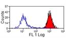 MHC Class I Monomorphic Antibody   CVS22 thumbnail image 2