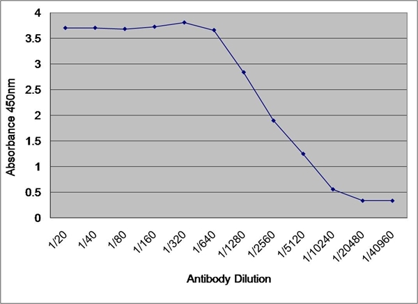 Albumin Antibody gallery image 1