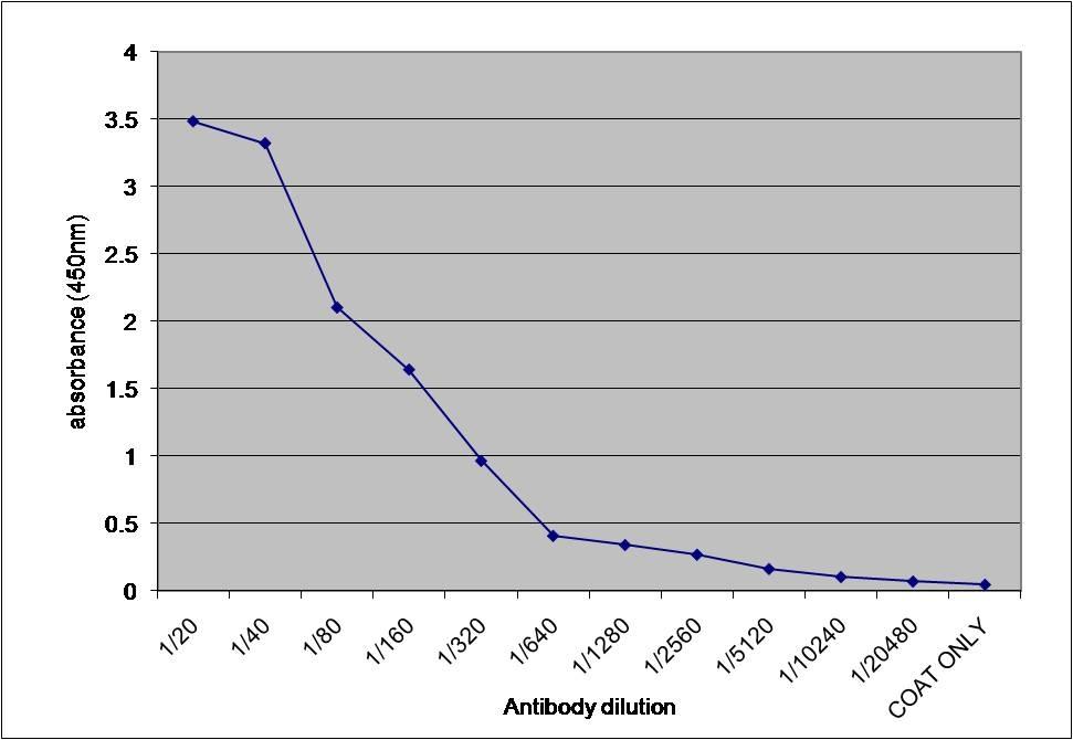 Alpha 1 Microglobulin Antibody gallery image 1