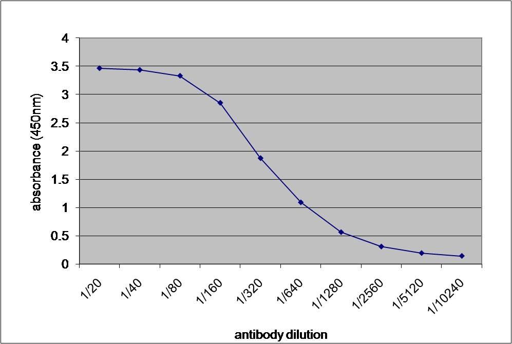 Alpha 2 Macroglobulin Antibody gallery image 1