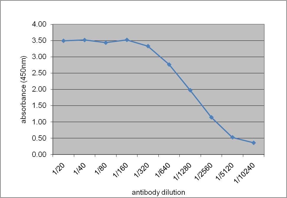 Apolipoprotein E Antibody   WUE-4 gallery image 2
