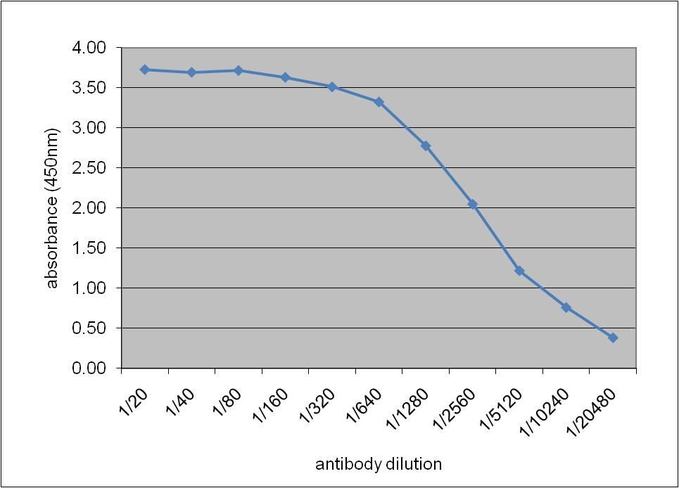 Apolipoprotein E Antibody   WUE-4 gallery image 1