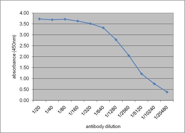 Apolipoprotein E Antibody | WUE-4 gallery image 1
