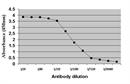 c-Myc Antibody | 9E10 thumbnail image 1