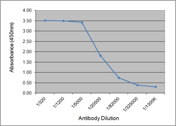C-Reactive Protein Antibody   160.10G10 gallery image 1