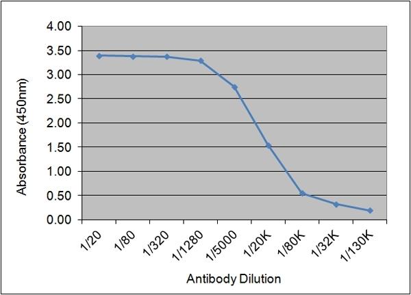 C-Reactive Protein Antibody | 160.1C7 gallery image 1