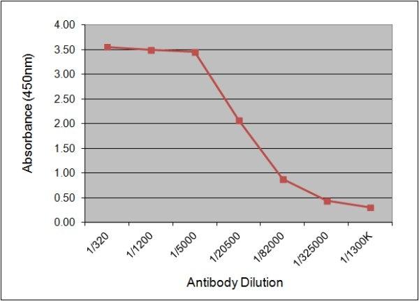 C-Reactive Protein Antibody | 160.5E8 gallery image 1