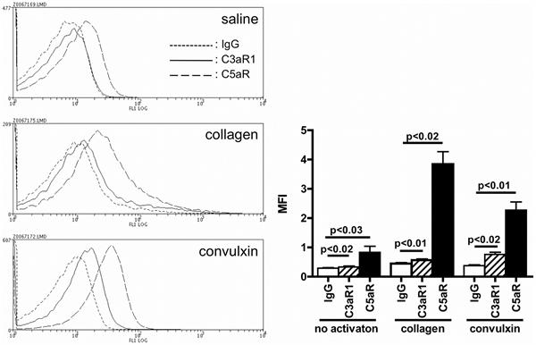 C3a Receptor Antibody | hC3aRZ1 gallery image 1