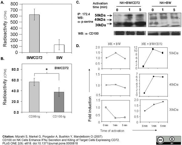 CD100 Antibody | A8 thumbnail image 3