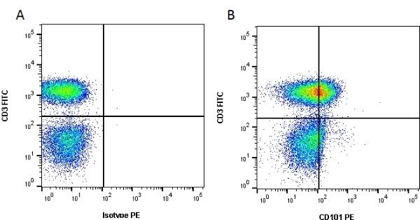 CD101 Antibody   BB27 gallery image 2