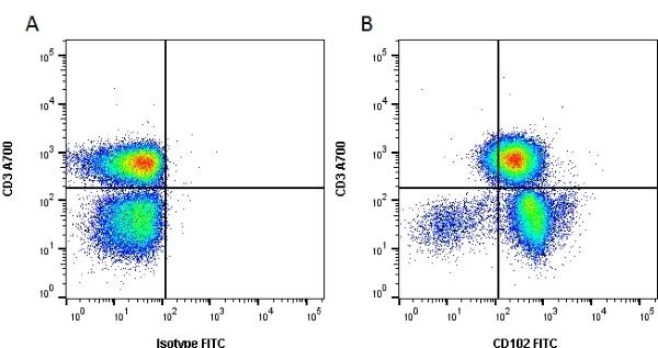 CD102 Antibody | CBRIC2/2 gallery image 2