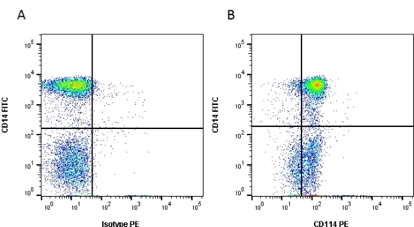CD114 Antibody | LMM775 gallery image 1