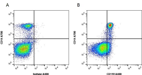 CD119 Antibody | BB1E2 gallery image 1