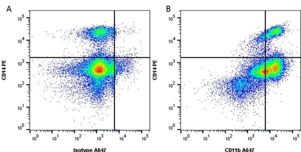 CD11b Antibody | ICRF44 gallery image 1