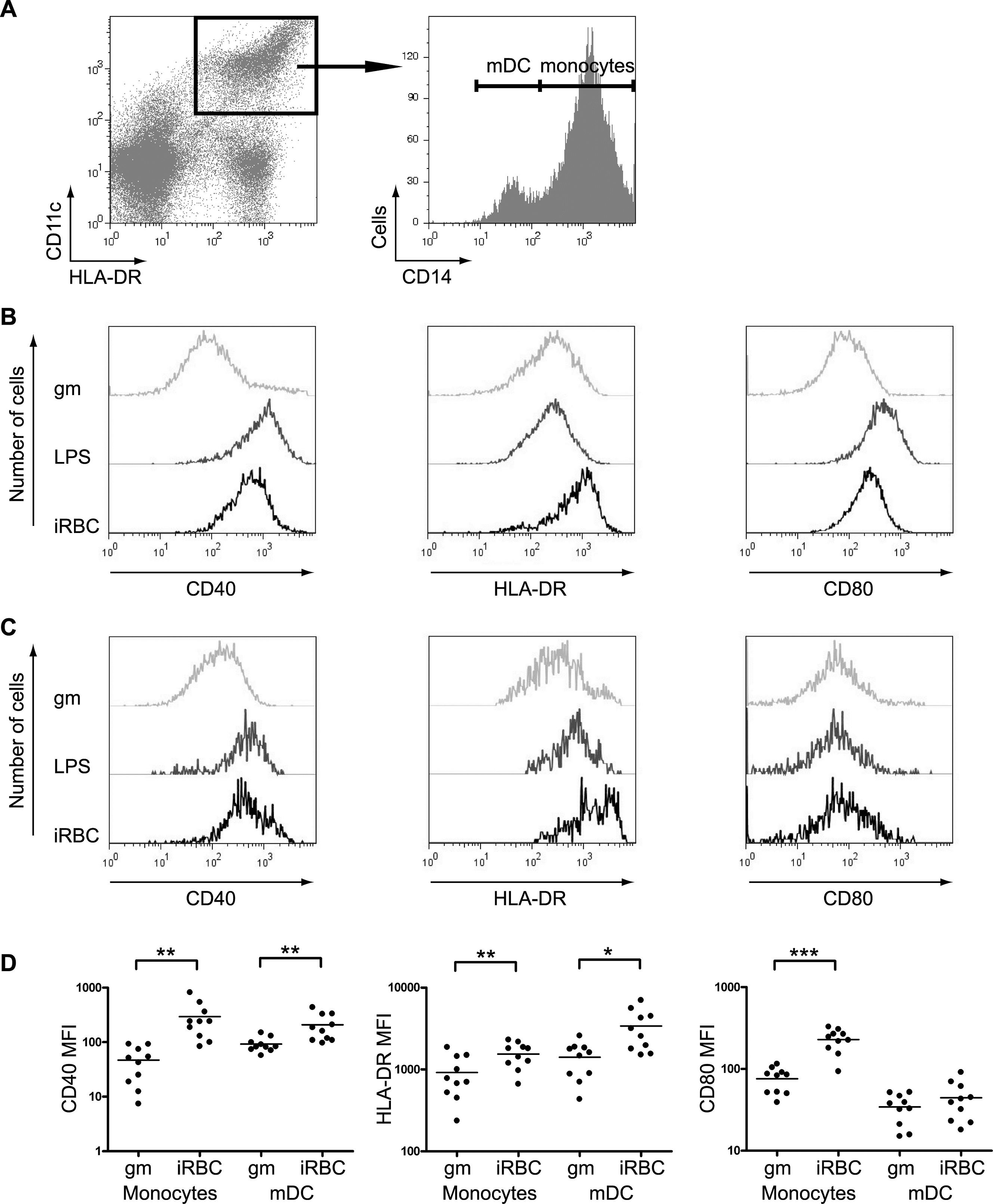 CD14 Antibody   MEM-18 gallery image 5