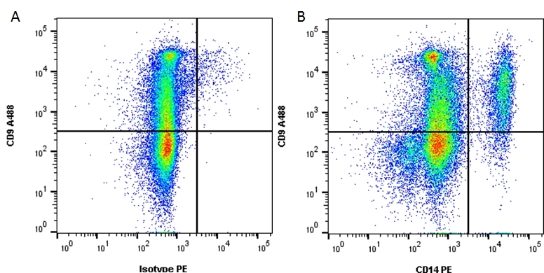 CD14 Antibody   TÜK4 gallery image 1