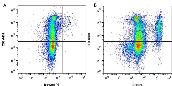 CD14 Antibody | TÜK4 gallery image 1