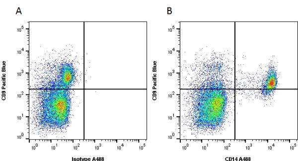 CD14 Antibody   TÜK4 gallery image 2