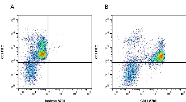 CD14 Antibody | UCHM1 gallery image 1