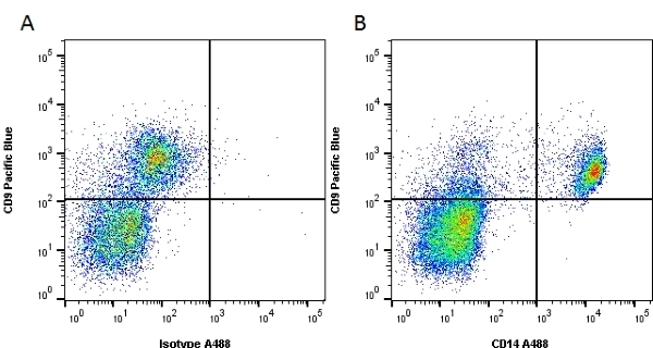 CD14 Antibody | UCHM1 gallery image 4