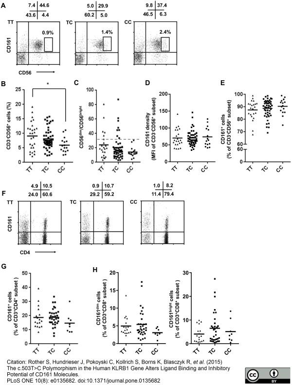 CD161 Antibody | B199.2 gallery image 3