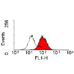 CD166 Antibody | 3A6 thumbnail image 2