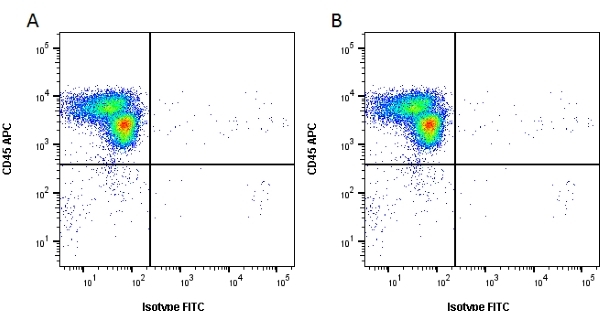 CD24 Antibody   SN3 gallery image 2