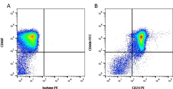 CD24 Antibody | SN3 gallery image 1