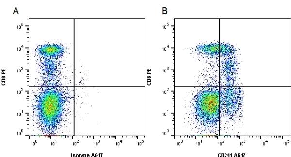 CD244 Antibody | 2B4.69 gallery image 1