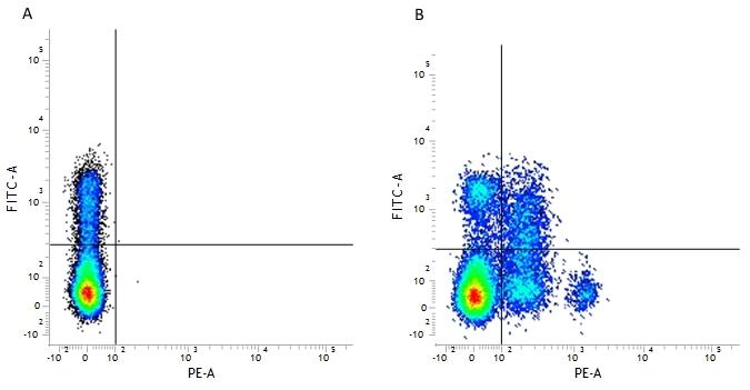 CD244 Antibody | 2B4.69 gallery image 2