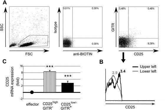 CD25 Antibody | MEM-181 gallery image 3