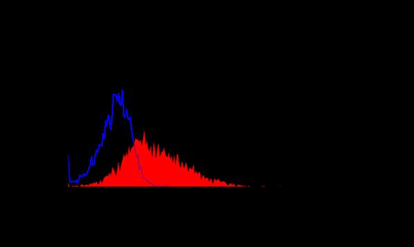 CD266 Antibody | ITEM-4 gallery image 1