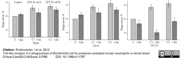 CD284 Antibody | HTA125 gallery image 7