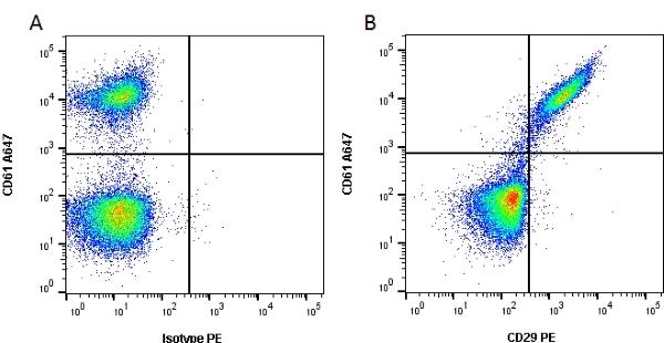 CD29 Antibody | 12G10 gallery image 2