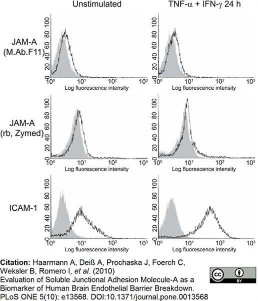 CD321 Antibody | M.Ab.F11 gallery image 2
