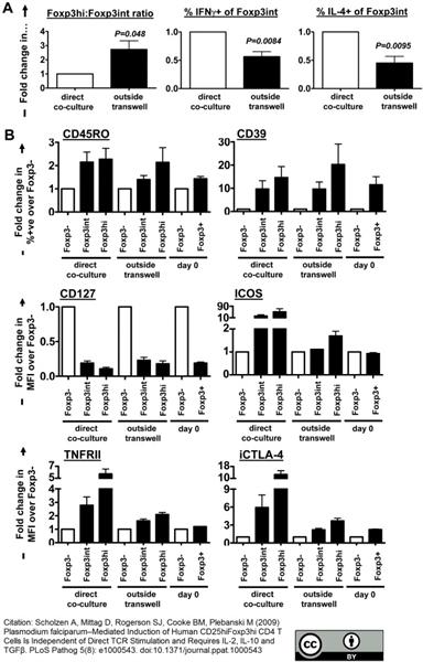 CD39 Antibody | A1 gallery image 4