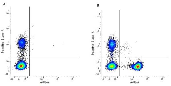 CD4 Antibody | RPA-T4 gallery image 4
