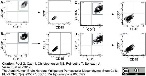 CD45 Antibody | F10-89-4 gallery image 1