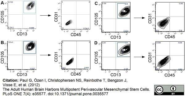 CD45 Antibody | F10-89-4 gallery image 3