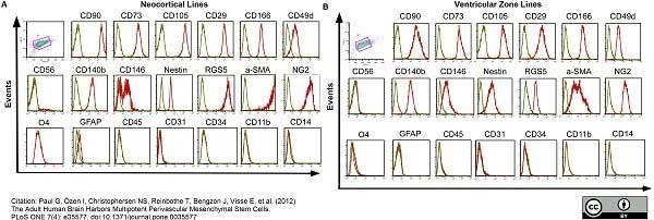 CD45 Antibody | F10-89-4 gallery image 4